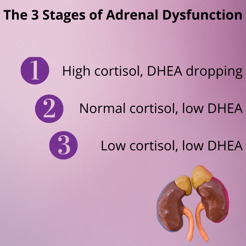 3 stages of adrenal dysfunction