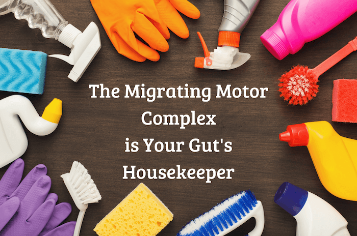 the migrating motor complex is your guts housekeeper surrounded by cleaning products